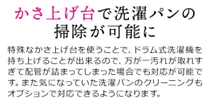 pc_2009hayawari_12-02